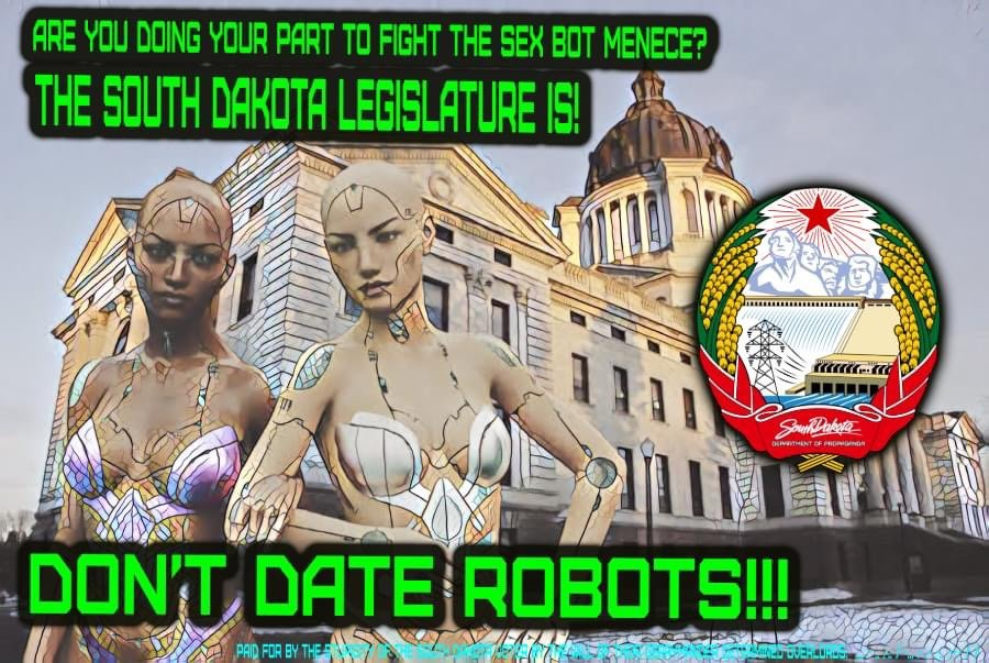 South Dakota state legislature wages war against Sex Bots