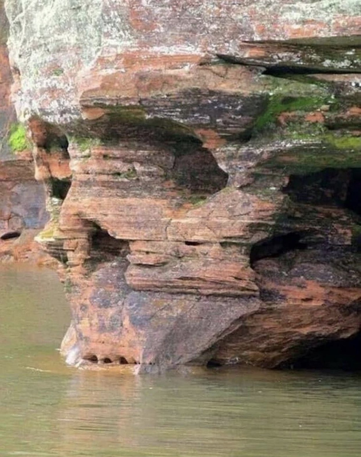 Drought conditions reveal the Spearfish Canyon Skull